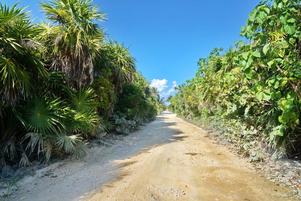 Majańska droga